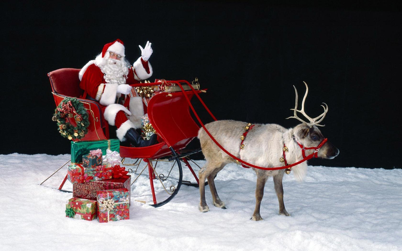 Новый год и Рождество